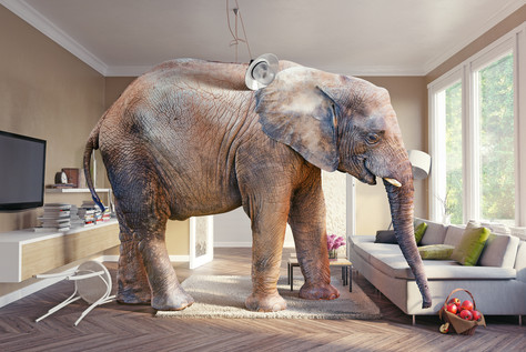 Why downsizing can be like eating an elephant