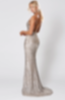 Broadway Silver Gown.png