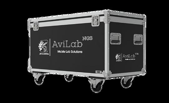AviLab Flyer F3-03-03.png