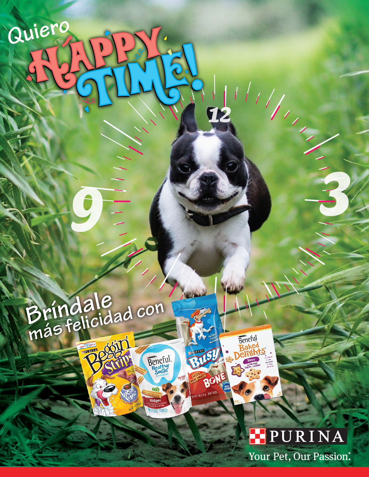 Purina Snacks