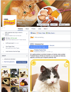 Friskies Fan Page