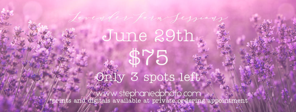 Lavender Farm for FB.jpg