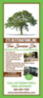 Tree Ad2.jpg