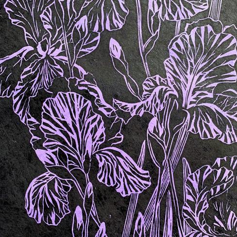 Purple Irises print