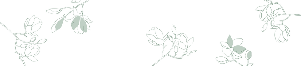 Magnolias-01.png