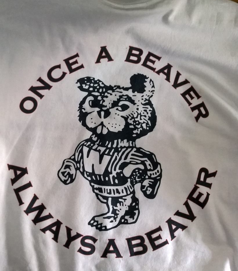 once3 a beaver.jpg