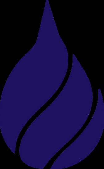 asna flame logo.png
