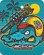 BC Racing back.jpg