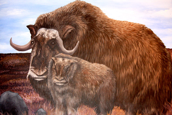 Mother and Baby Yak