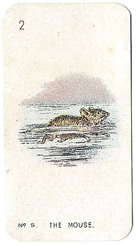 Alice-In-Wonderland-Cigarette-Cards-No-5