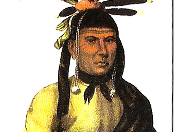 American Indians Complete Set of 25 Trade Cards 1994