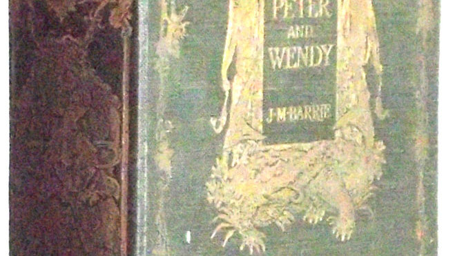 JM Barrie Peter and Wendy FD Bedford First Edition 1911