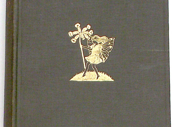 The Book of the Flower Fairies First Edition 1927