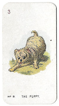 Alice-In-Wonderland-Cigarette-Cards-No-8