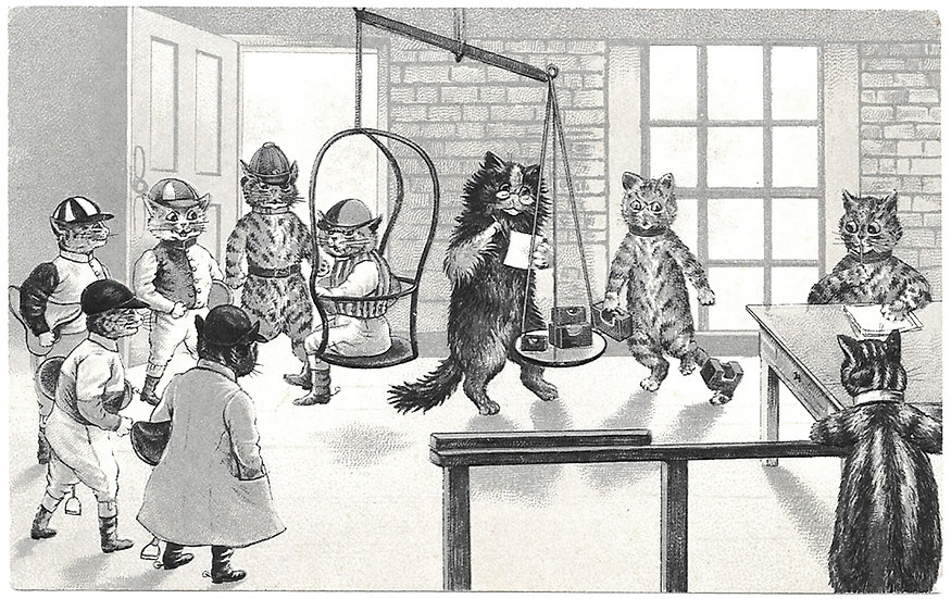 Louis Wain Cats Postcard Jockeys Weighing-In Used circa 1905