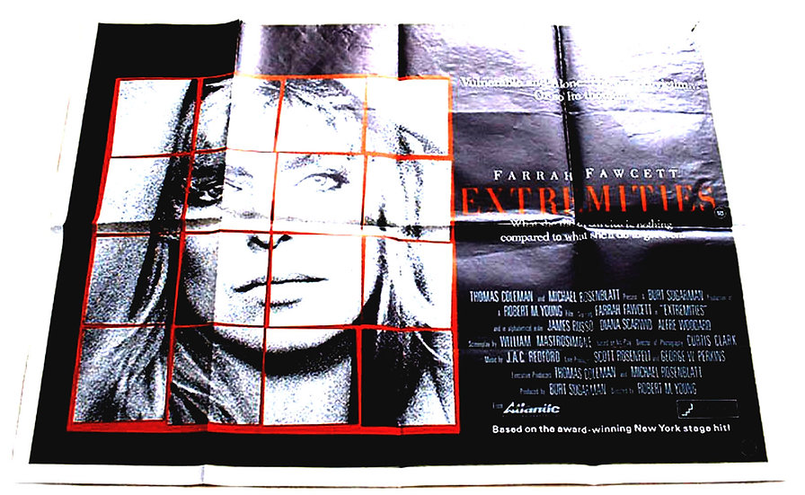 Extremities Film Poster 1986