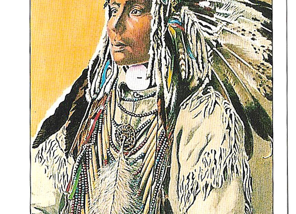 North American Indians Set of 20 Trade Cards 1995