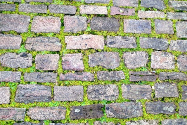 Worn gray cobblestones in a grassy green grid; more Modern Quilt inspiration?