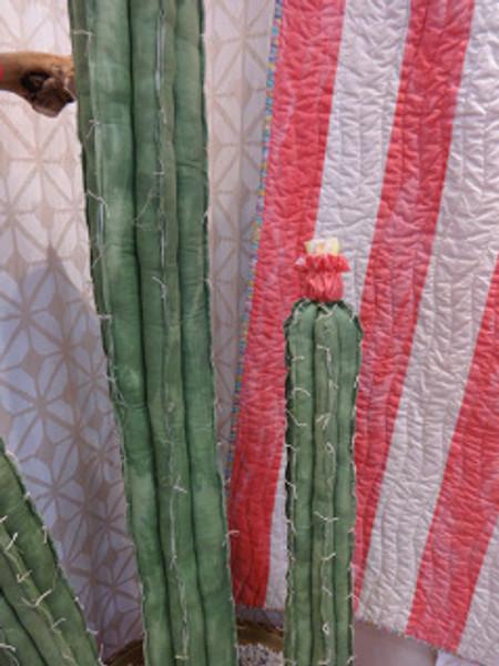 Succulents or Cascade