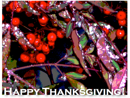 Sending our Thanksgiving Greetings from SHWS!