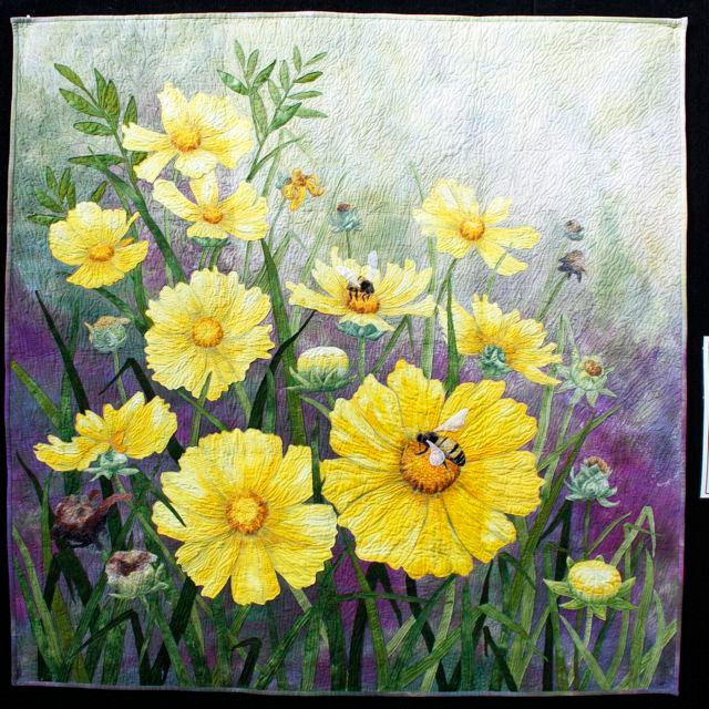 Coreopsis by Barbara Hind