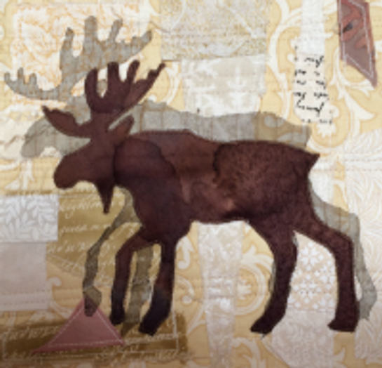Dates & Places-J:  Judy Farrow's Moose 2014 Empty Spools