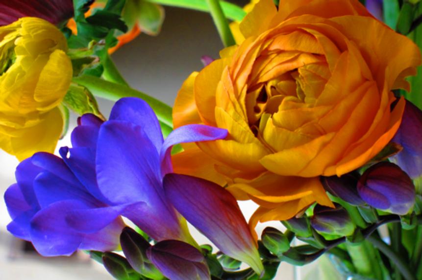 Inspiration-J:  Blue-Violet and Yellow-Orange