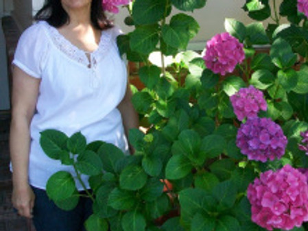 Meet Lori Lott:  Quilter, Pattern Designer