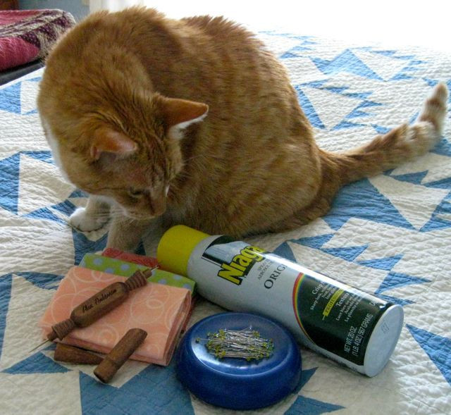 """That super sewing room cat, Scooter, asks """"What's all this stuff?"""""""