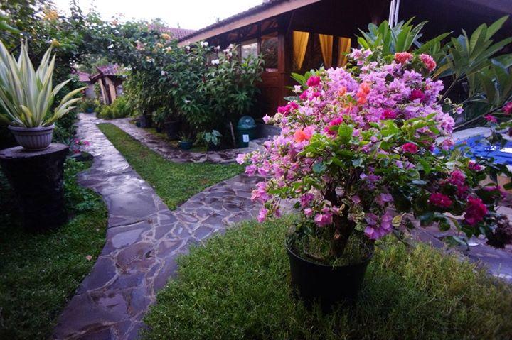 Omah Gili - I Love Bali (17)