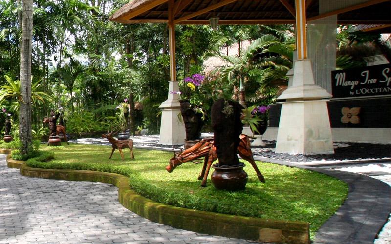 Kupu kupu barong - I Love Bali (1)