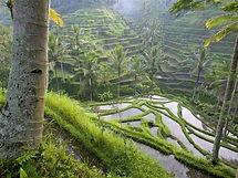 Balin matkan suunnittelu