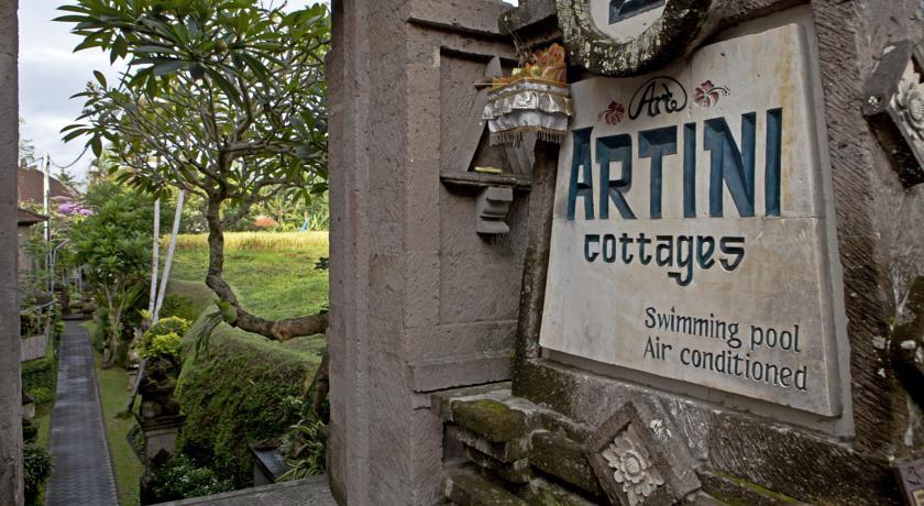 Artini 2 Cottage - I Love Bali (14)