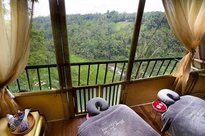 Kupu kupu barong - I Love Bali (12)
