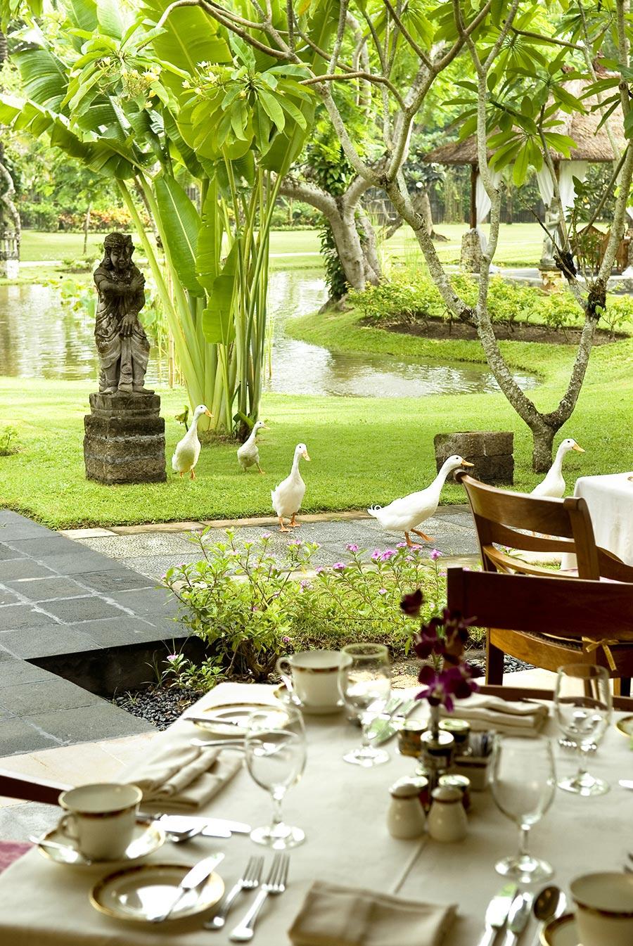 Palace-Lounge-Table-Set-Up