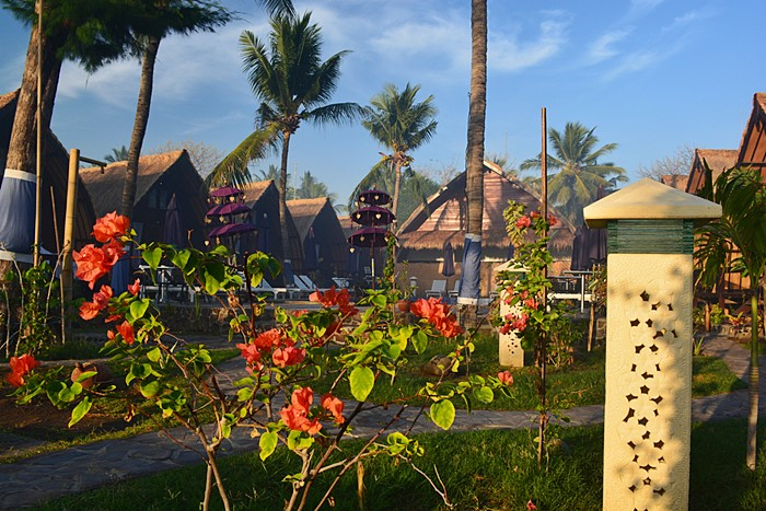 Turtle beach - I Love Bali (12)