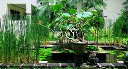 Legian Paradiso Hotel - I Love Bali (23)