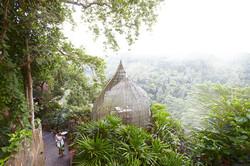 Kupu kupu barong - I Love Bali (29)
