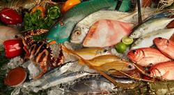 Bali tropic - I Love Bali (4)