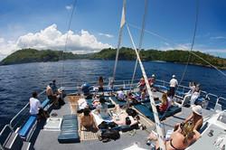 Castaway Cruise