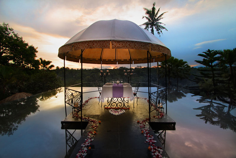 Kupu kupu barong - I Love Bali (23)