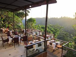 Kupu kupu barong - I Love Bali (21)