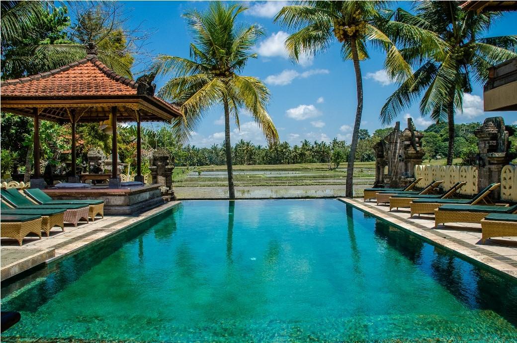 Green field Ubud - I Love Bali (58)
