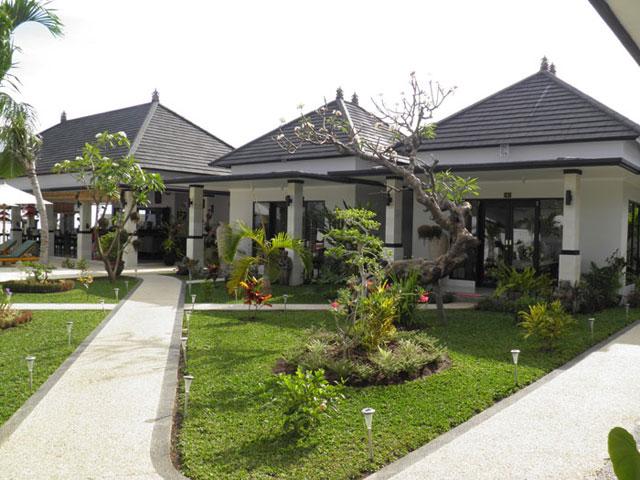 Kelapa Lovina - I Love Bali (1)