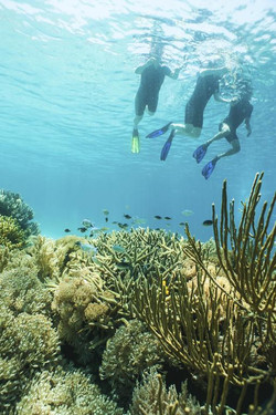 Kokomo Resort Gili Gede - I Love Bali (13)