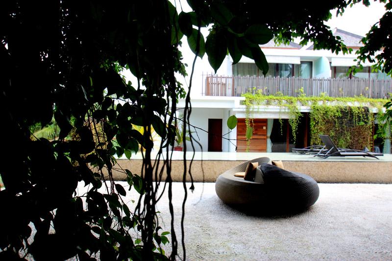 Kupu kupu Jimbaran - I Love Bali
