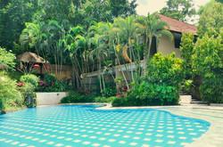 Kupu kupu barong - I Love Bali (10)