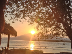 Turtle beach - I Love Bali (1)