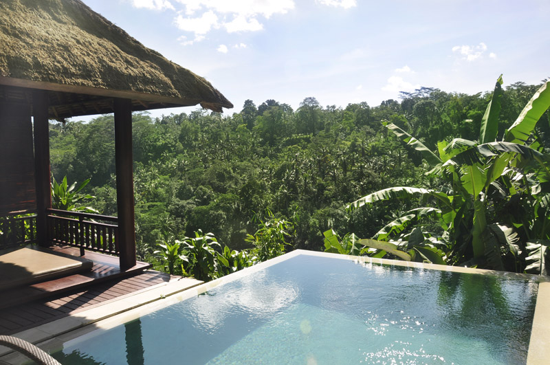 Ayung river pool villa - I Love Bali (3)