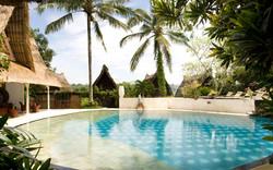 Kupu kupu barong - I Love Bali (9)